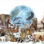 Os animais e o Sistema Irracionalista