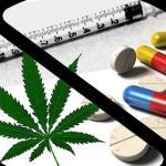 10 razões para legalizar as drogas