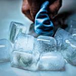 Continuaremos a enxugar gelo ou mudaremos de postura na aplicação dos precedentes?