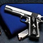 O porte de arma dos atiradores desportivos
