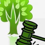 Competência Ambiental: disposições