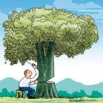 Como o dano moral coletivo ambiental é reconhecido