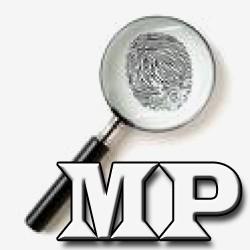 STF reafirma o poder de investigao do MP hermenutica constitucional importante