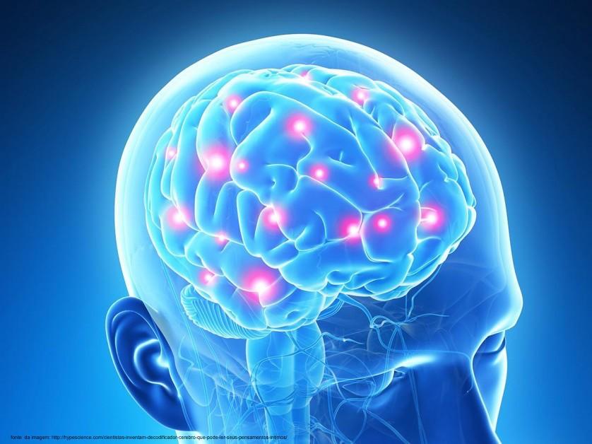 Crebro humano e as quatro vises de mundo Ns juntos com eles Ns distantes deles Ns explorando eles e Ns sem eles