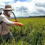 Dissertação de mestrado derruba mito do uso seguro de agrotóxicos