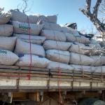 Após pesagem, PF atualiza para 11 toneladas, número de maconha apreendida