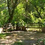 Lei em Belo Horizonte dá isenção de IPTU a moradores de casas com quintal verde