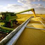 Acordo entre MAPA e APEX reforça promoção do agronegócio brasileiro no exterior