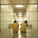 É possível a concessão de indulto para pessoas submetidas à medida de segurança?