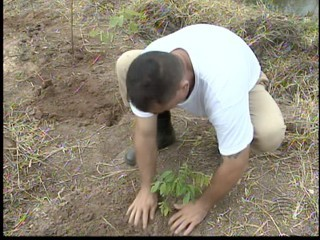 Detentos participam de projeto para melhoria do meio ambiente